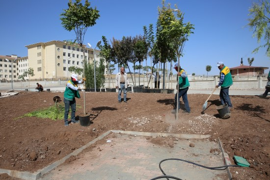 Seyrantepe mahallesi yeşil alana kavuşuyor