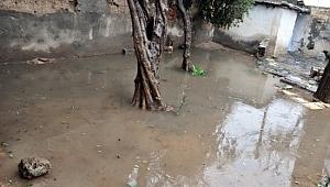 Akçakale'de evleri su bastı