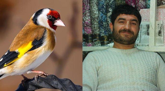 Şanlıurfa'da Saka kuşlarının nesli tükenmek üzere