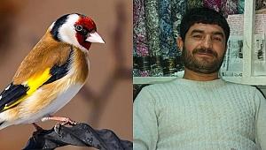 Suriyeliler saka kuşlarına dadandı
