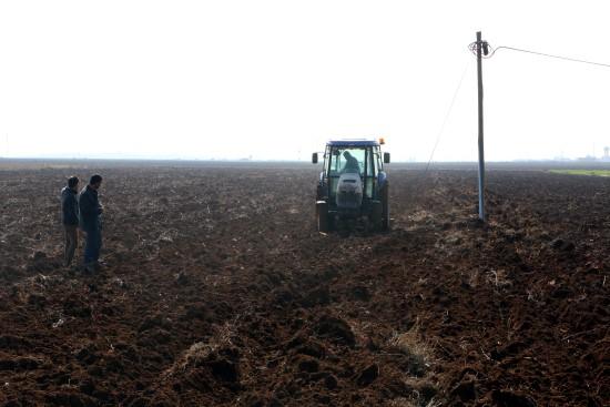 Yağışlar GAP çiftçisini rahatlattı