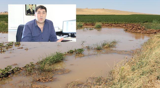 Enerji, su ve toprak korunmalı