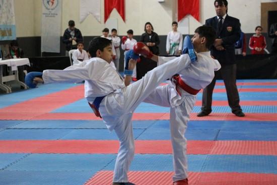 Karate müsabakaları Bozova'da yapıldı