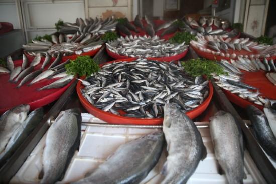 Fırat'ın balıkları yurt dışına satılıyor