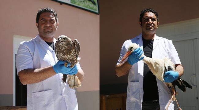 Tedavileri tamamlanan kuşlar doğal ortamlarına bırakıldı