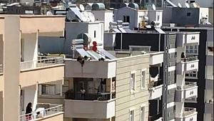 Şanlıurfa'da akıllara durgunluk veren olay - Videolu Haber