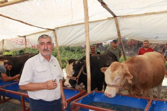 Manavgat kurban pazarının ilk sakinleri Urfalılar