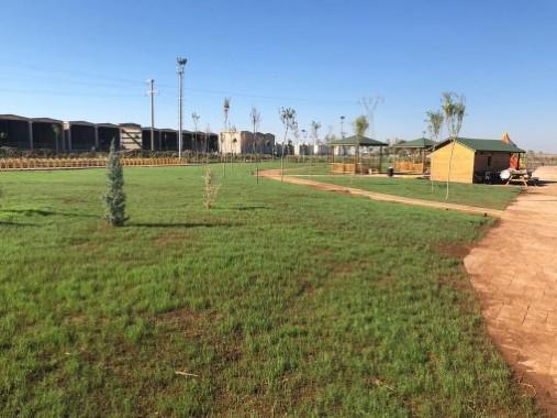 Viranşehir'in en büyük yeşil alanı yapılıyor