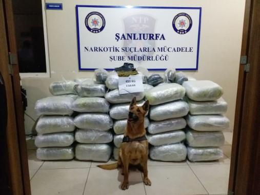 Şanlıurfa'da 453 kilo esrar ele geçirildi