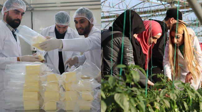 Suriyeli öğrenciler Şanlıurfa'da ekonomiye katkıda bulunuyor