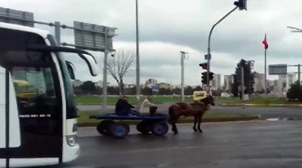 At arabasıyla kırmızı ışıkta bekledi
