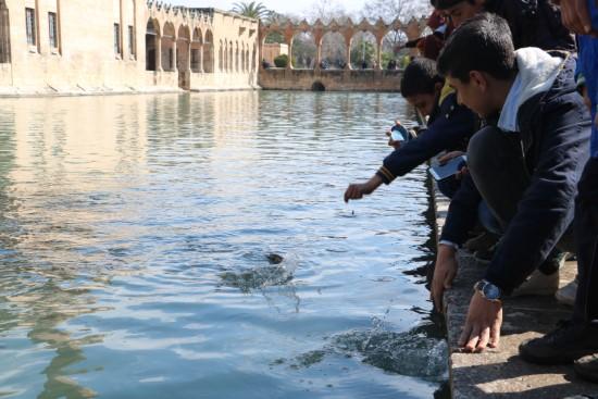 İlk defa Balıklıgöl'ü görmenin sevincini yaşadılar