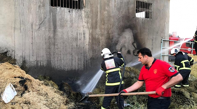 Boydere köyündeki yangın söndürüldü
