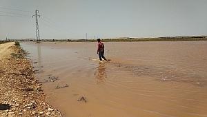 Sulama borusu patladı ekili araziler su altında kaldı