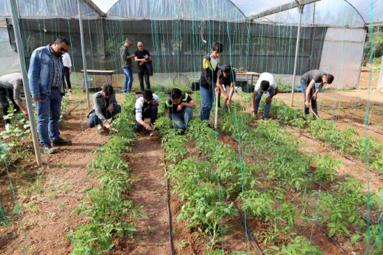 Yabancı öğrenciler Şanlıurfa'daki lisede tarım öğrenecek