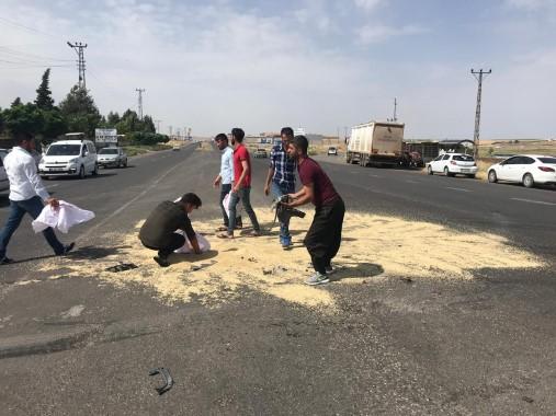 Şanlıurfa'da meydana gelen kazada arpa yola saçıldı
