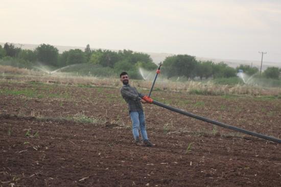 Tarım işçileri bayramı tarlada çalışarak geçirdi