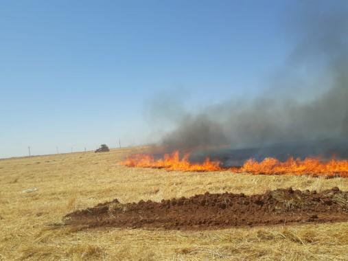 Suriye sınırındaki anız yangını korkuttu
