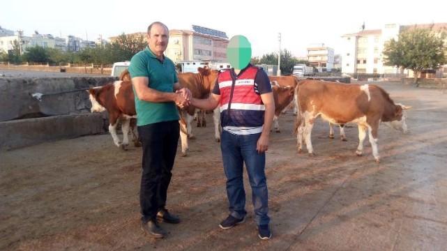 Kayseri'de çalınan hayvanlar Siverek'te satıldı
