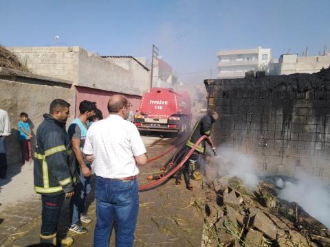 Şanlıurfa'da ahır yangını