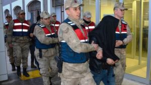 Şanlıurfa'da hayvan hırsızlığı: 4 tutuklama