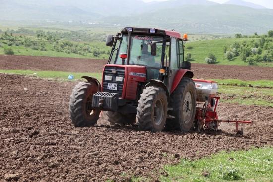 Çiftçiler, Ramazan ayında sıcak ve Covid-19'a rağmen tohumları toprakla buluşturuyor