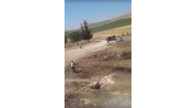 Şanlıurfa'da 2 kişinin öldüğü kavganın görüntüleri ortaya çıktı (Video)