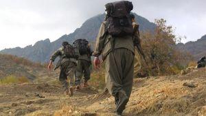İkna yoluyla 1 örgüt mensubu Şanlıurfa'da güvenlik güçlerine teslim oldu