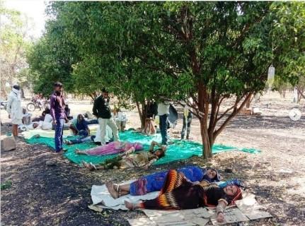Hindistan'da Covid-19 hastaları portakal bahçelerinde tedavi görüyor